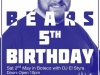 Dublin Bears Birthday 2015