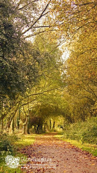Autumn on the towpath 5 watermark.jpg