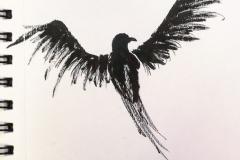 ink-raven-web