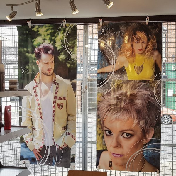 Peter Alexander photos from 2015 in salon