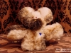 Ma's Teddy Bear 3 web