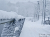 snow-covered-fence-1