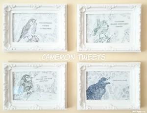 Cameron Tweets - Glenn Quigley